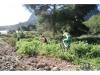 senda-vaques-avituallamentcallosa2012271