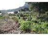 senda-vaques-avituallamentcallosa2012274